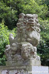 天祖若宮八幡宮(練馬区関町北)12