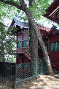 駒繋神社(世田谷区下馬)10