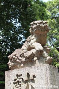 八雲氷川神社(目黒区八雲)22