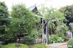 桜神宮(世田谷区新町)6