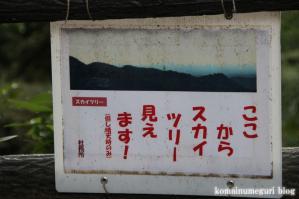 秩父御嶽神社(埼玉県飯能市坂石)44