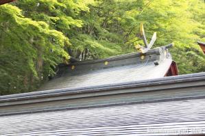 三峰神社(埼玉県秩父市三峰)113