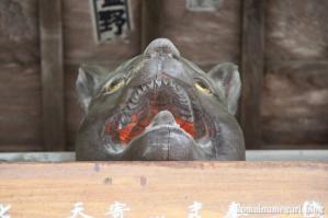 三峰神社(埼玉県秩父市三峰)197