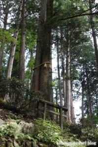 三峰神社(埼玉県秩父市三峰)132