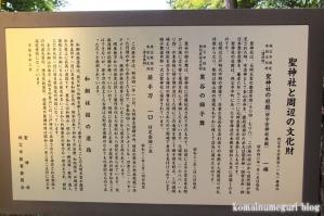 聖神社(埼玉県秩父市黒谷字菅仁田)5