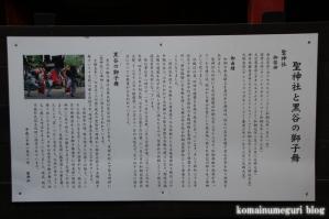聖神社(埼玉県秩父市黒谷字菅仁田)24