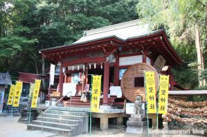 聖神社(埼玉県秩父市黒谷字菅仁田)27