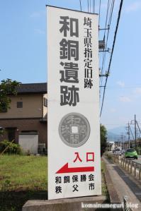 聖神社(埼玉県秩父市黒谷字菅仁田)2