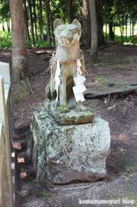白山神社(岐阜県飛騨市古川町中野)18