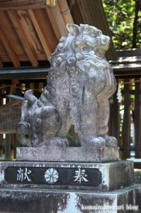 飛騨総社(岐阜県高山市神田町)20