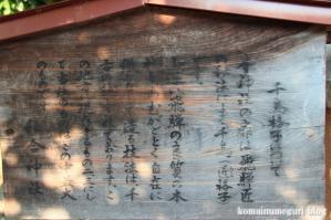 日枝神社(岐阜県)高山市城山2