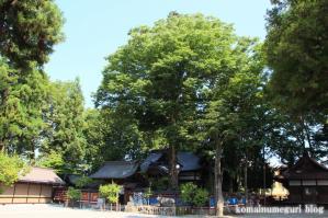 飛騨天満宮(岐阜県高山市天満町)32