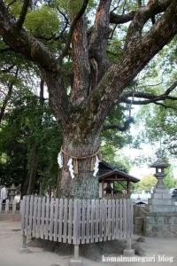 大依羅神社(大阪市東住吉区庭井)60
