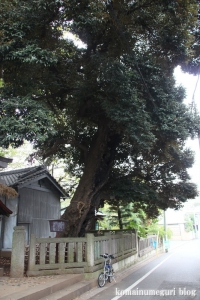 小豆沢神社(板橋区小豆沢)7