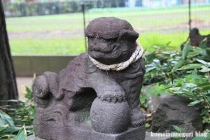 蓮根氷川神社(板橋区蓮根)25