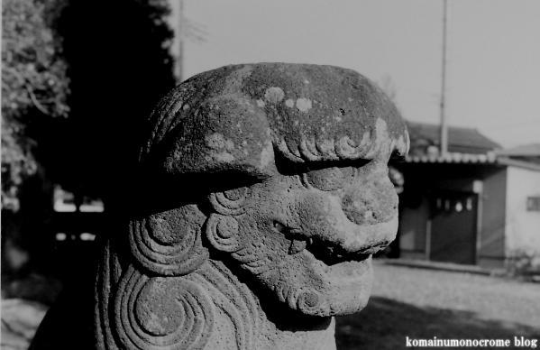 諏訪神社(埼玉県加須市諏訪)6