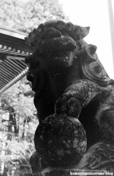 阿伎留神社(あきる野市五日市)2