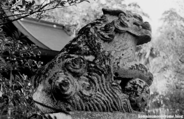 二宮神社(あきる野市二宮)3