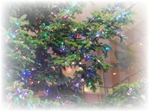 2014.12 メリークリスマス~♪