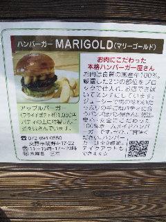 マリーゴールド2