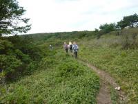 笹原 山頂 尾根道を歩く