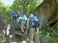 大岩の登山道