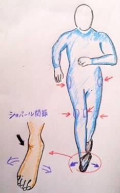 足首と膝、股関節