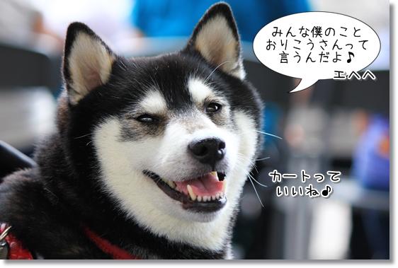 10_20130613144317.jpg