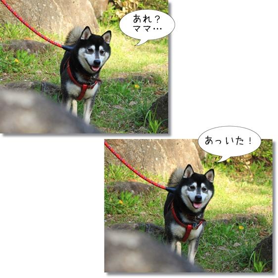 19_20130510163359.jpg