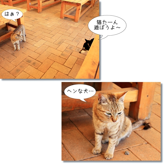 23_20130630155502.jpg