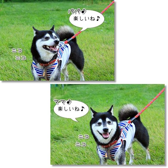5_20130831164102ffe.jpg
