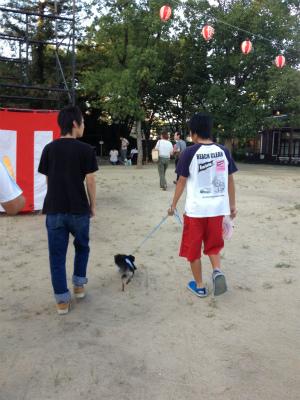 ワンちゃん夏祭り 014
