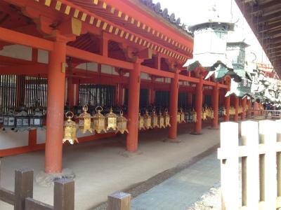 奈良山焼き 010