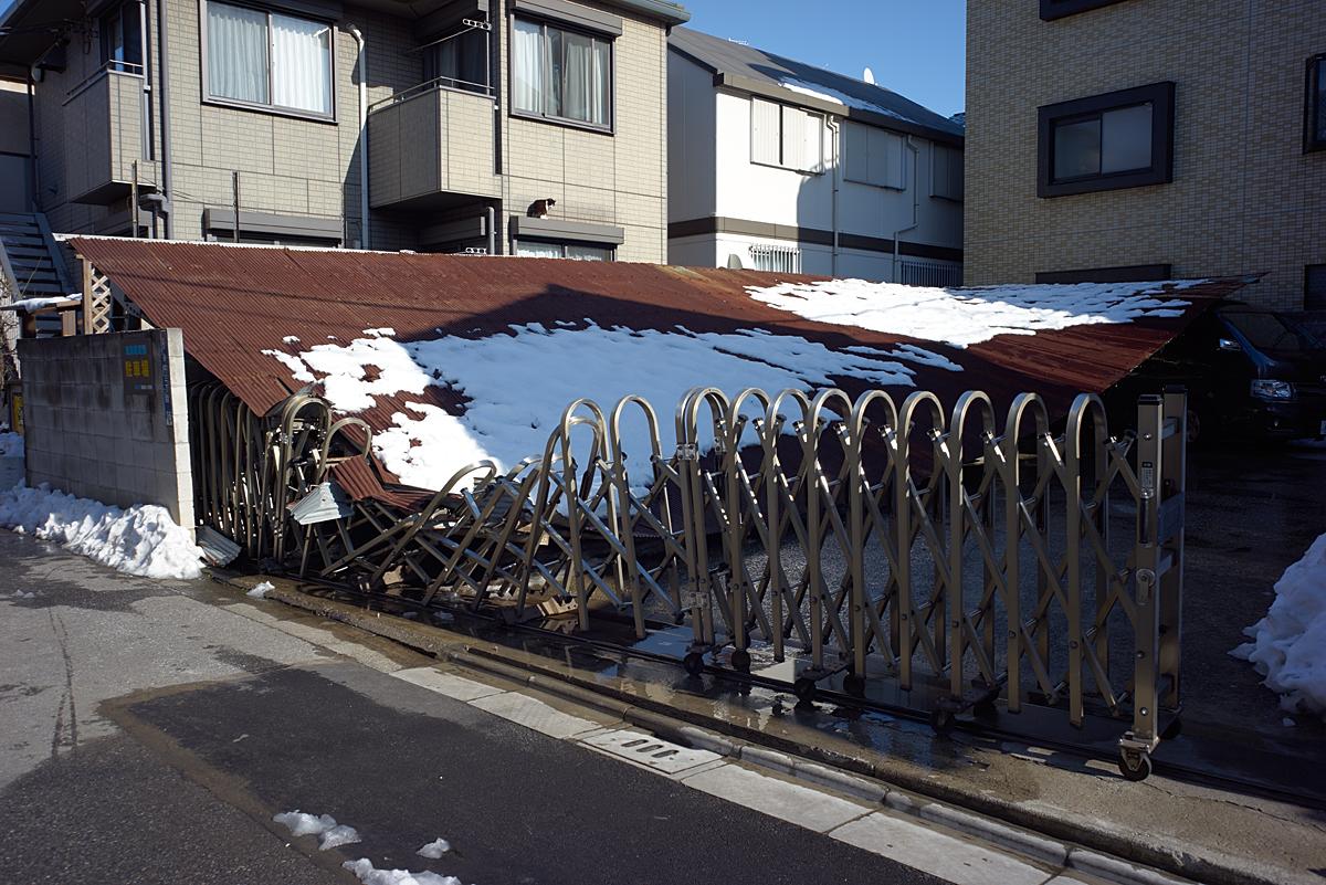 雪の重さに耐えられなかったようです