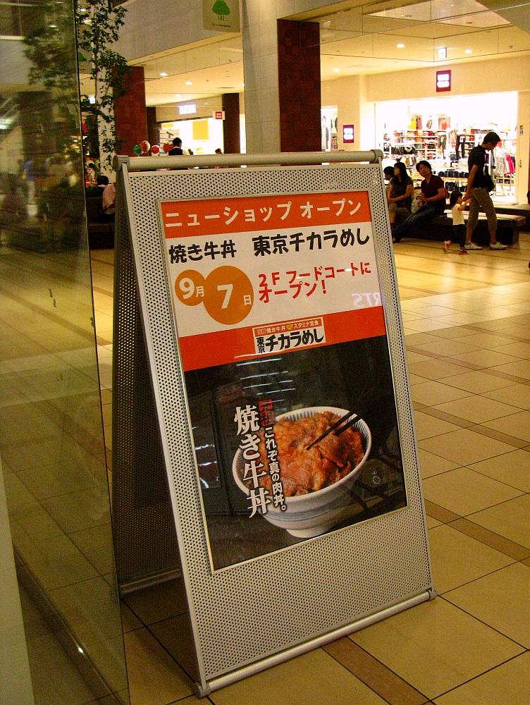 2011_09_17 035