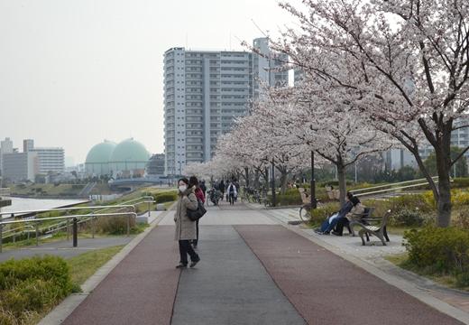 文花・京島・玉ノ井・三ノ輪 (446)_R