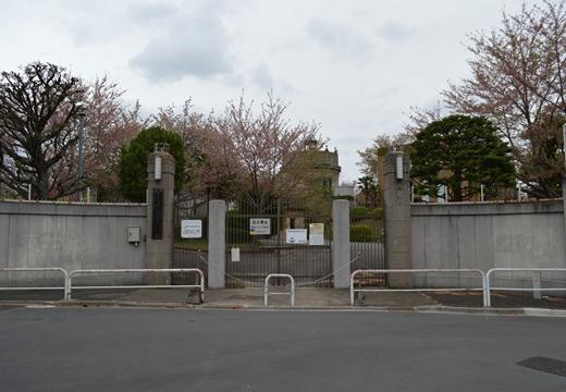 三軒茶屋駒沢 (164)_R
