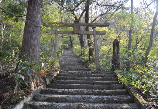 東山温泉 (156)_R