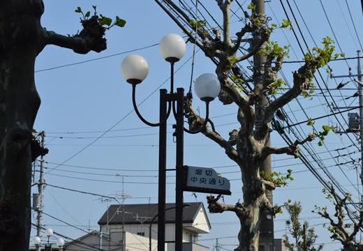 堀切菖蒲園 (105)_R