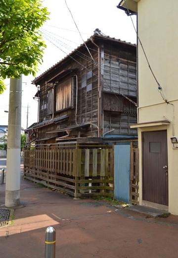 堀切菖蒲園 (133)_R