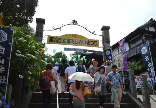 白山神社 (12)_R