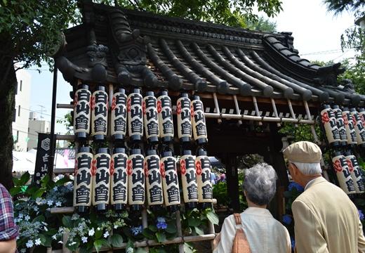 白山神社 (34)_R