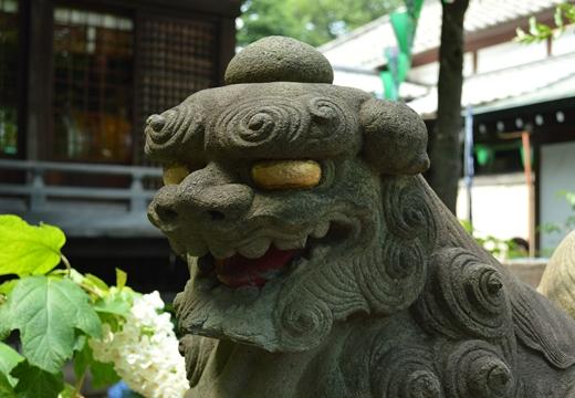 白山神社 (49)_R