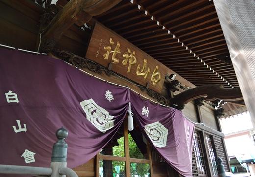 白山神社 (67)_R