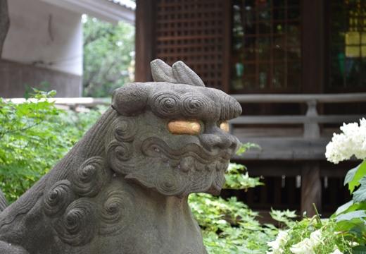 白山神社 (73)_R