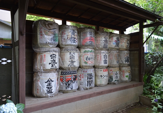 白山神社 (87)_R