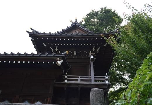 白山神社 (174)_R