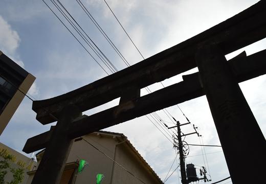 白山神社 (184)_R