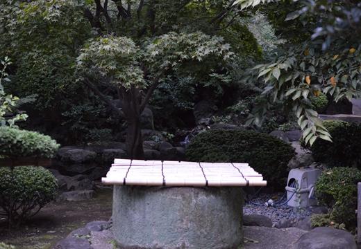 奥浅草100 (230)_R
