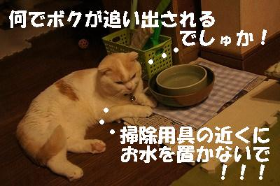 s-2014110113.jpg